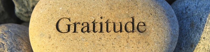 "a rock with the word ""gratitude"" embedded into it"
