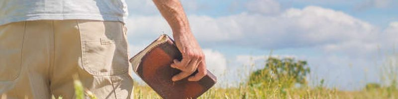 a person in a field holding the Bible at their side