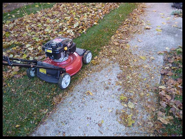 red lawn mower mowing leaves along sidewalk