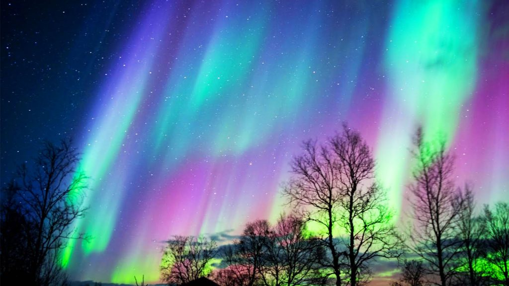 a night sky with vertical ribbons of blue, green and purple